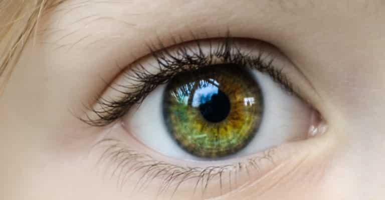 Menschliches Auge - Thema Personalarbeit